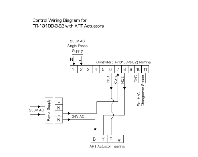 Anergy-Model & Wiring on